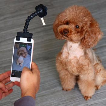 Pet Selfie Stick Atachment